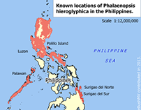 Map showing locations of Phalaenopsis hieroglyphica