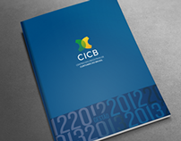 CICB Management Report