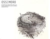 ossimoro | master's thesis