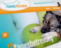 Dog sitter/trainer