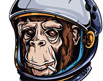 Astrochimp tutorial