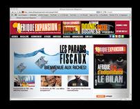 Afrique Expansion Web Site
