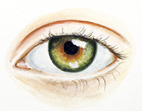 Eye Portrait Paintings - Watercolor