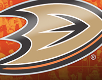 Anaheim Ducks: 2013-14 Playoff Campaign