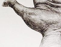 Hands + Foot