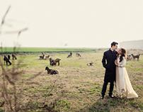 Poorva || Endre - Ludhiyana Wedding