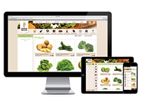 Savannah Food Co-Op Online Service Redesign