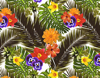 Tropical & Caliente - Print Development