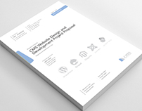 Clean and Professional CMS Website Project Proposal