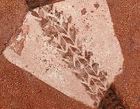Empire keeway : Temporada de beisbol