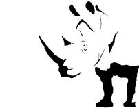 Síntesis Rinoceronte