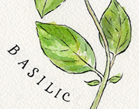 French herbs with lettering