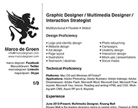 Marco de Groen Resume 2014