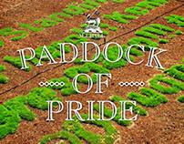 M.J.Bale Paddock of Pride