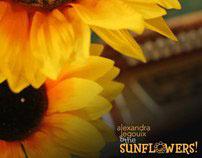 Alexandra Legouix and the Sunflowers