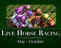 Live Racing Promotion