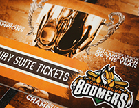 2014 Schaumburg Boomers Luxury Suite Ticket Books