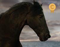 Pepephone - El caballo Maximiliano