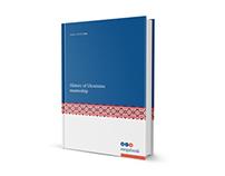 Annual report fot Megabank