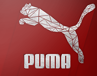 Puma Triangulation