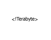 Terabyte logo and website