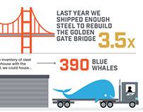 Majestic Steel - Infographics