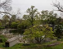 Spring [May]