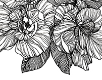 Flowers-sketch