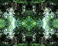 Jardín Botánico* Pattern-photography