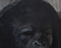 Great Ape Series