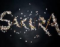 Sakura: The Alphabet