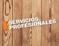 Profesionales - The Home Depot México