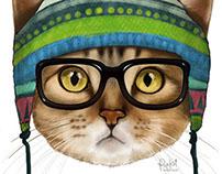 Gatuno // Cat