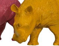 Little Rhinocéros