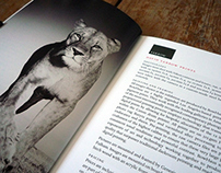 et al // David Yarrow brochure Mk II