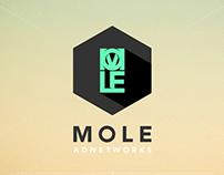MOLE Branding // Web Design