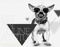 WKML Website // Branding