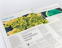 Newspaper design | Dag & Tid