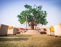 Indian Weddings - Part II