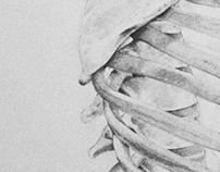 Desenho 01