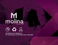 Mollina Consulting