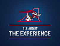 Alouettes / Moslon beer street marketing operation