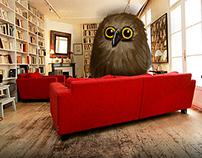 Triplette Owl