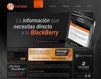 Web Design - PINTOME