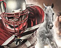 Mustangs Wallpaper