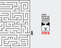 Mira Foundation | Guide Dogs for the Blind