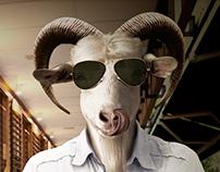 Billy-goat friend
