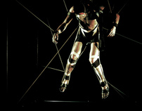 holometabolous - master project 2011