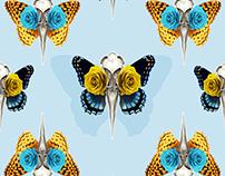 BIRD SKULLS Pattern