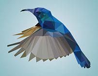Hummingbird Low Poly Wallpaper